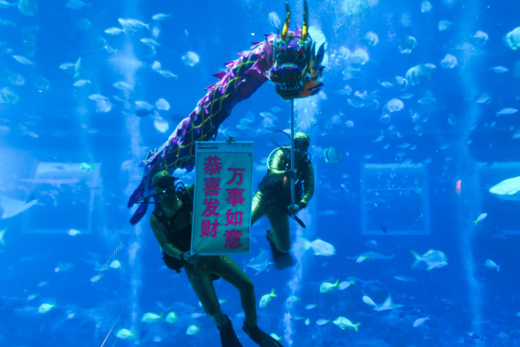 CNY Guide 2019: SEA Aquarium