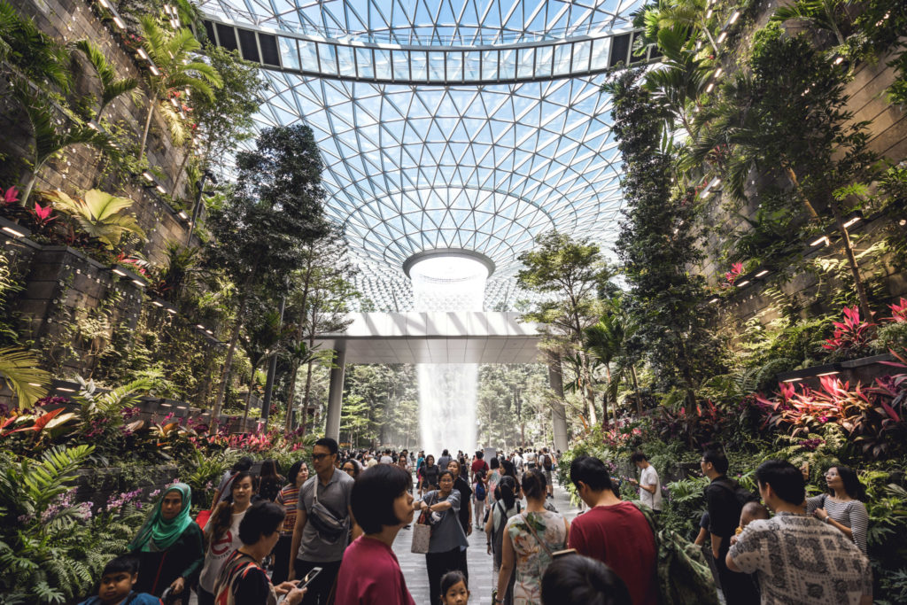 Jewel Changi: Forest Valley
