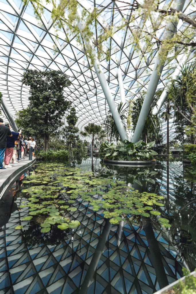 Jewel Changi - Immersion Garden