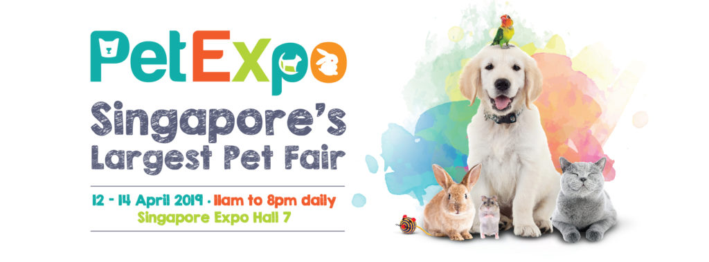 PetExpo 2019 - Feature Pic