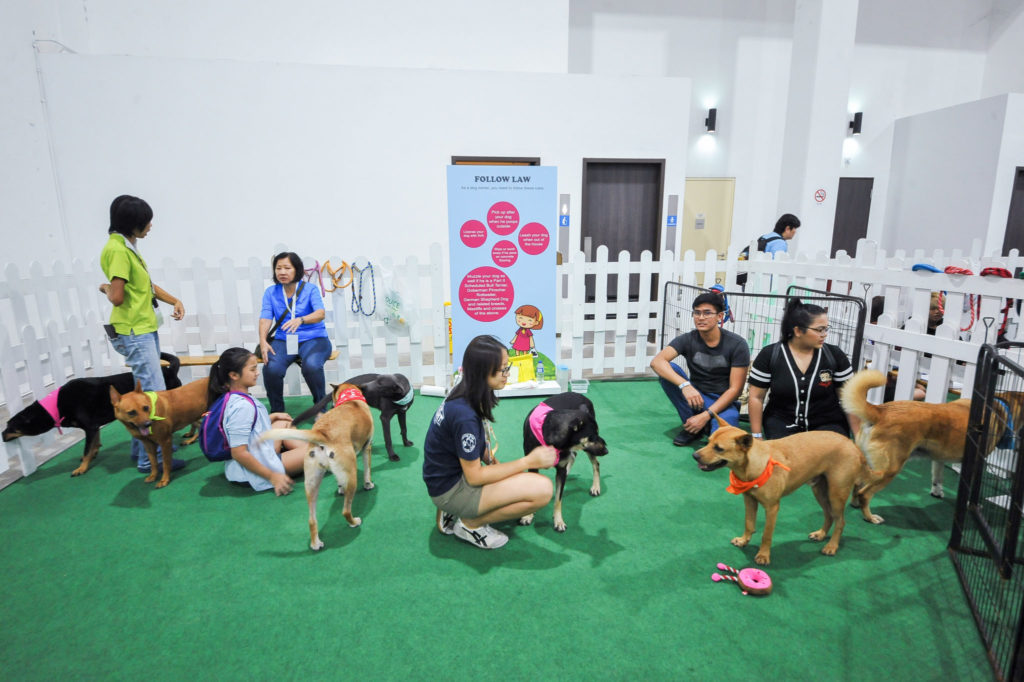 PetExpo 2019 - Adoption Drive 1
