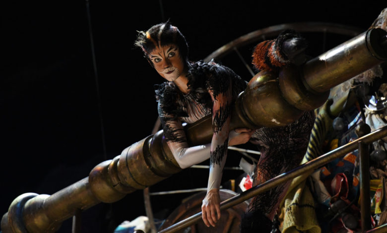 Photo of Cats The Musical Review: Immersive and showy, but nothing else to purr about