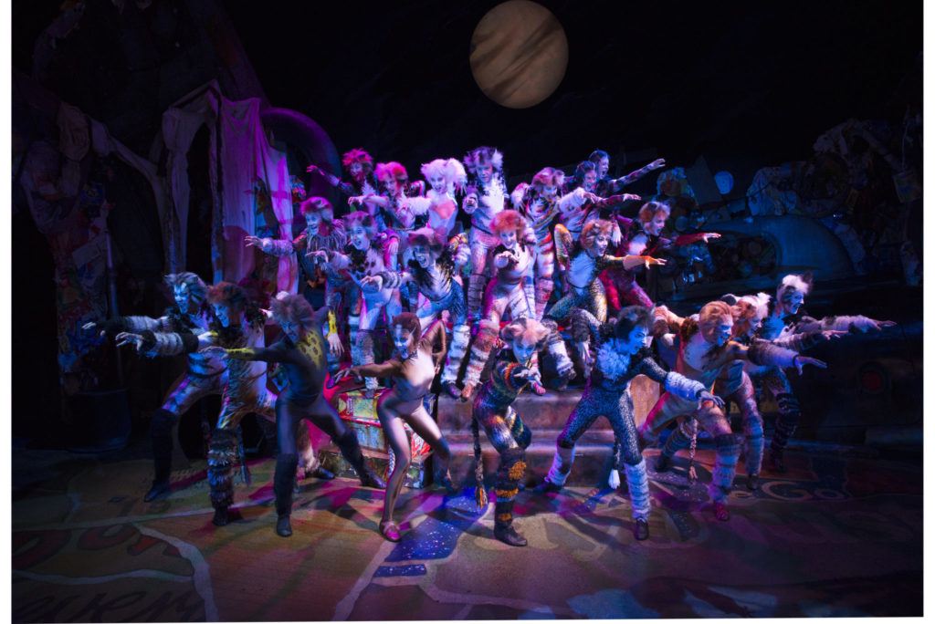 Cats the Musical: The Jellicle Tribe
