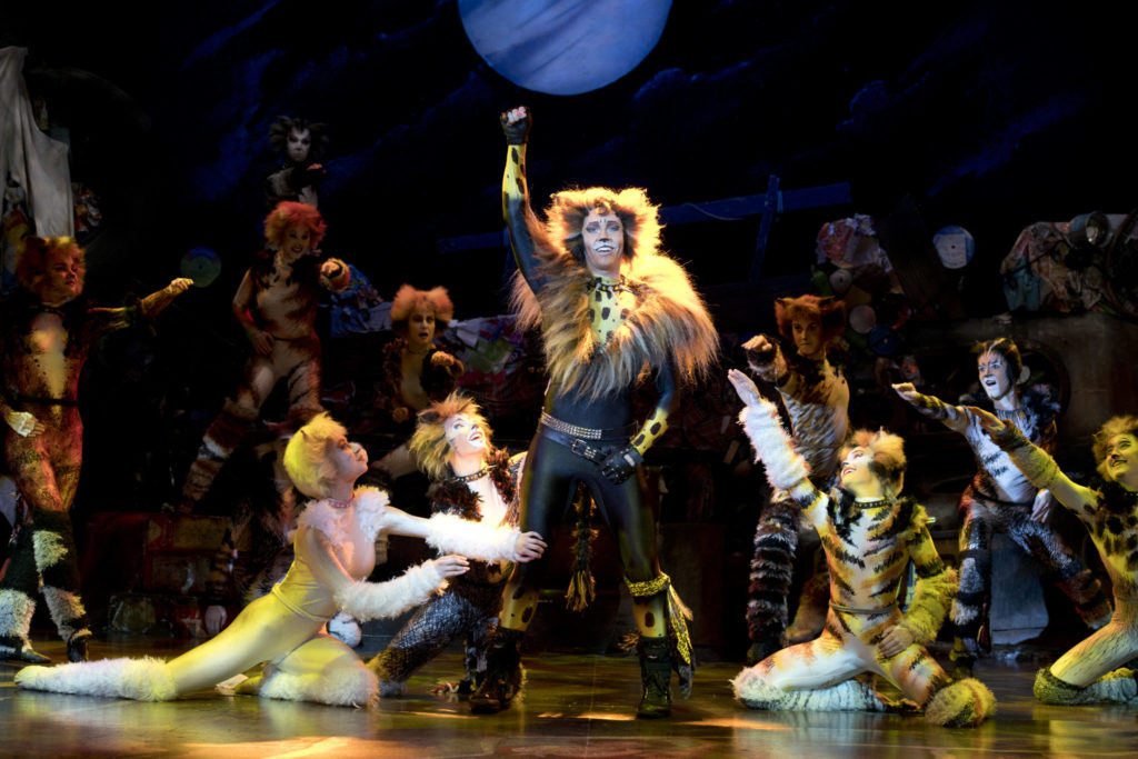 Cats the Musical: Rum Tum Tugger