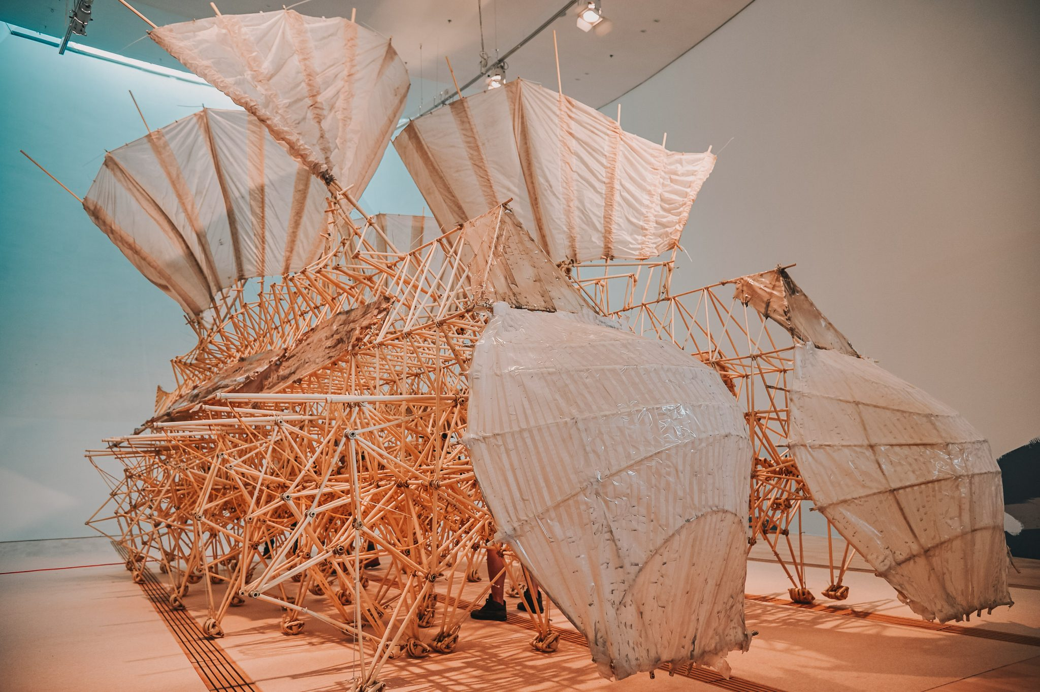 Strandbeests: On Display Strandbeest