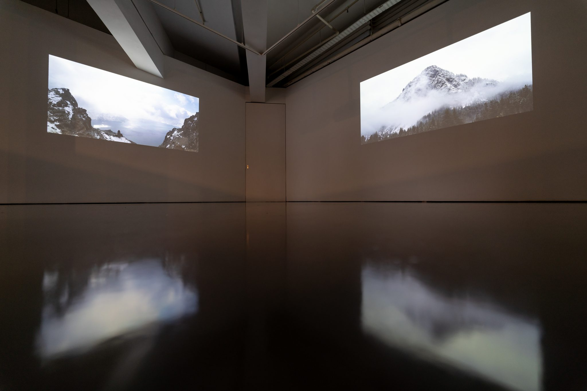 The Nuclear Landscape, Sim Chi Yin: Dimorphic Videos